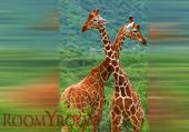 Жирафы 1500х2700 мм